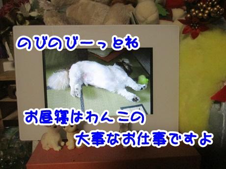 1213-08_20161213165238cb3.jpg