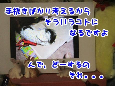 1215-08_20161215194607d65.jpg