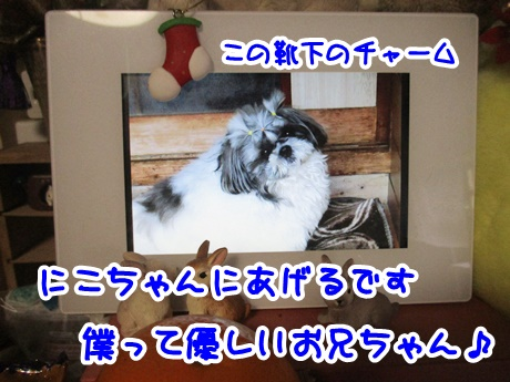 1221-08_2016122116455363e.jpg