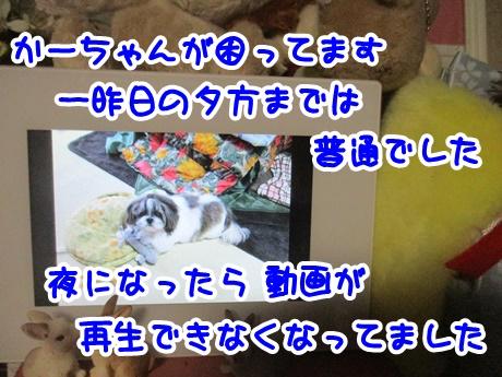 1227-05_201612271706110c7.jpg