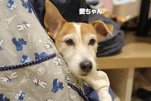 筑紫野ゆめタウン 2017-1-15-5
