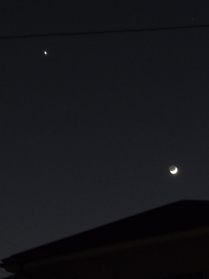 P1010594 金星