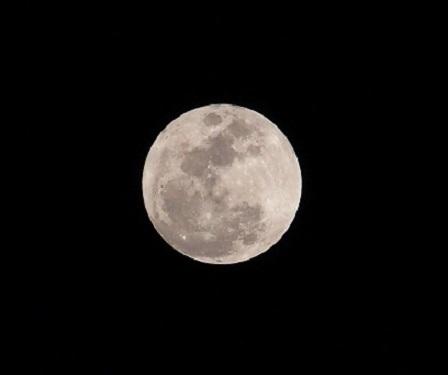 P1120587 今宵の月