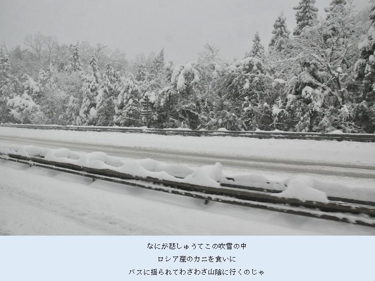 カニ旅行 2017-1-1