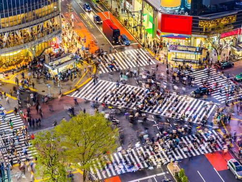 its-a-little-busier-than-kyoto.jpg