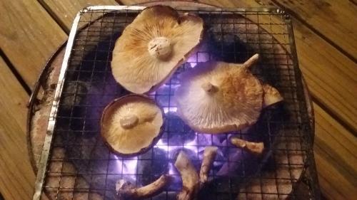 焼きシイタケ