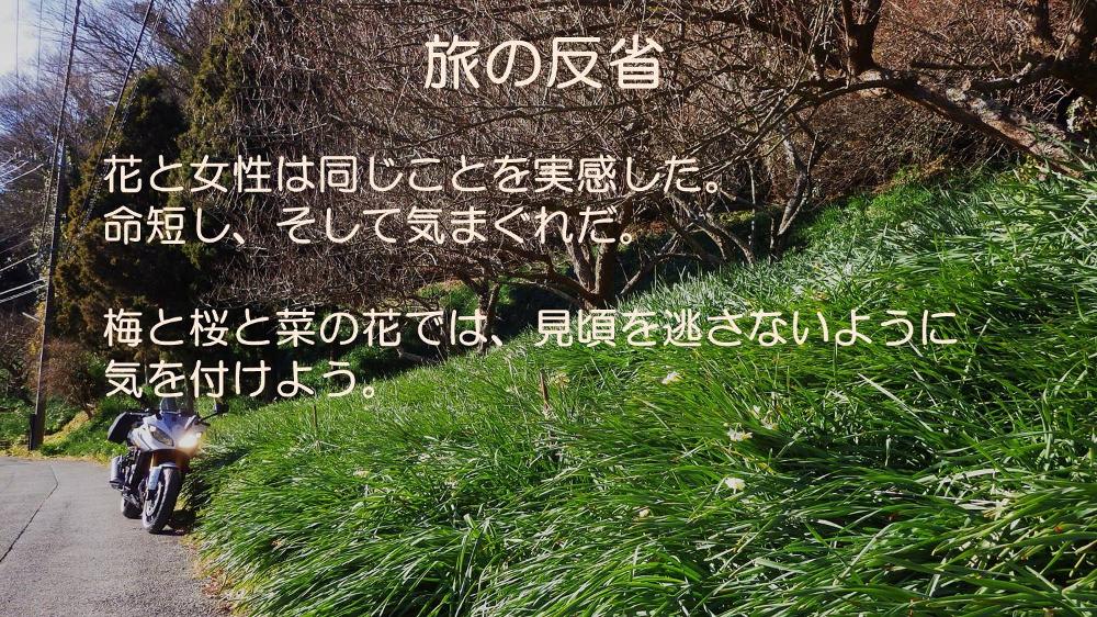 反省文03