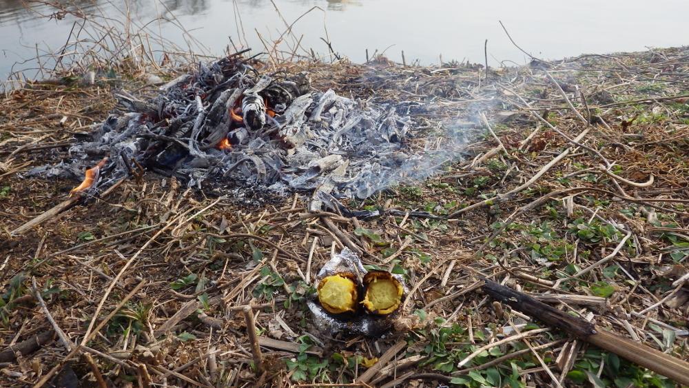 2焚き火で焼いも2RIMG2622