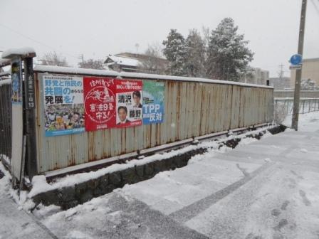 20161124-59.jpg
