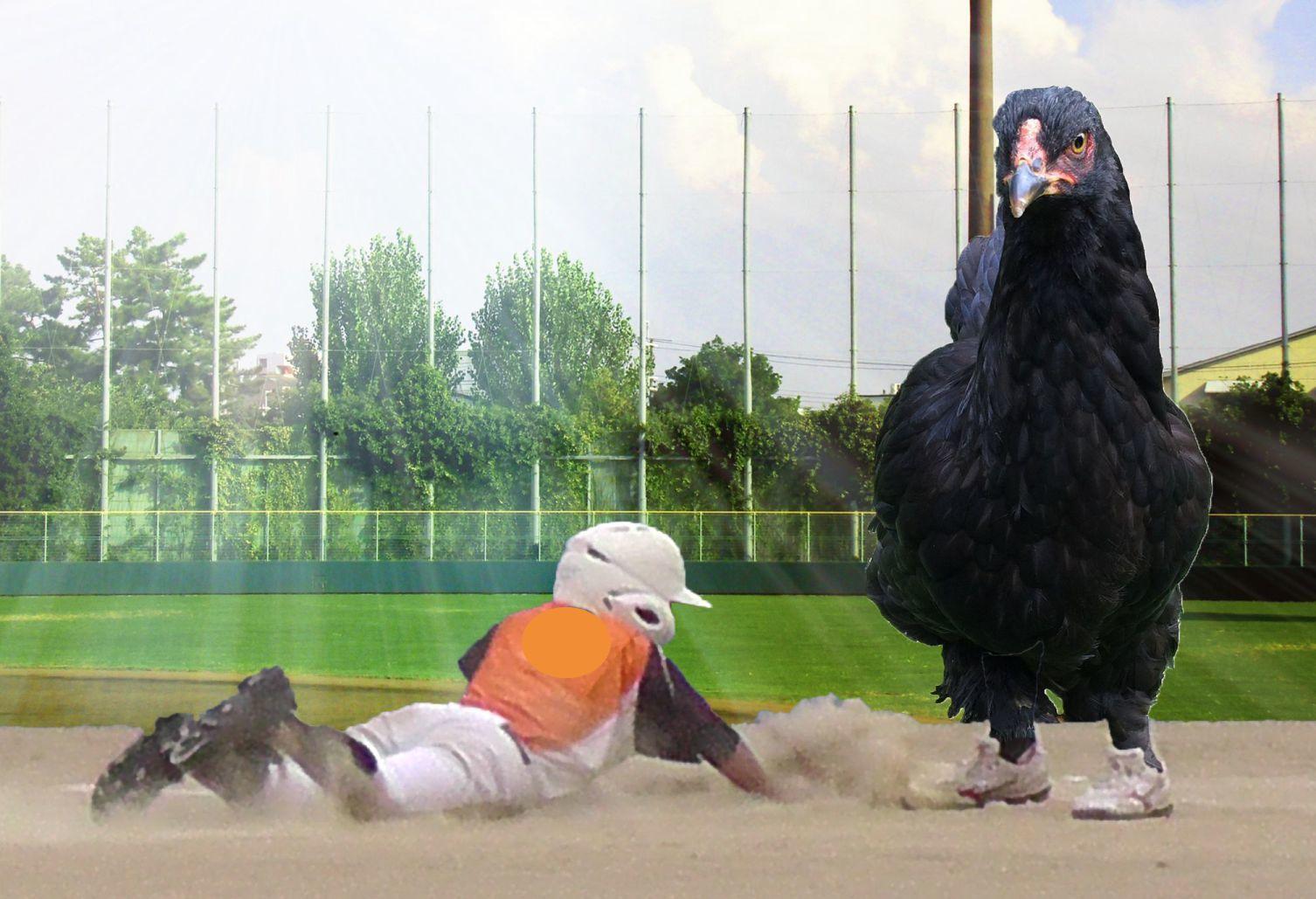 軟式少年野球写真合成1