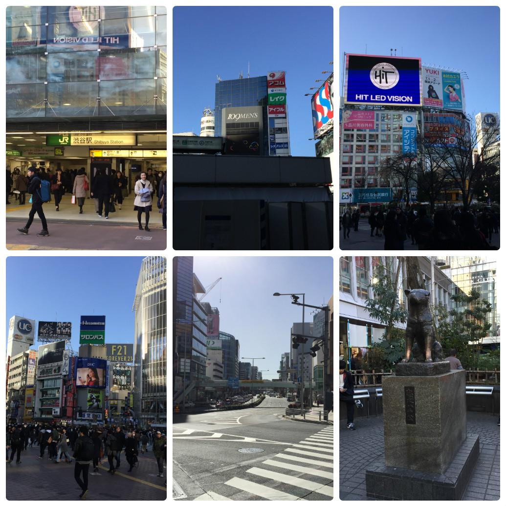 東京出張風景