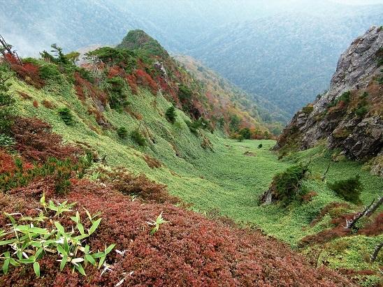 5稜線下の紅葉