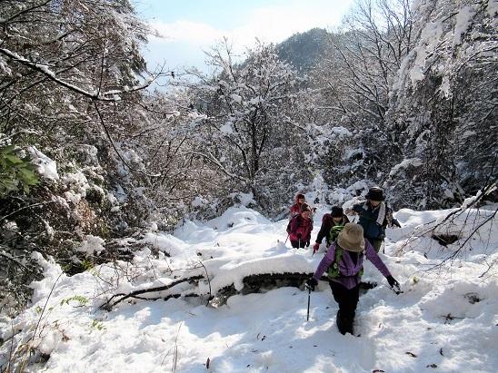 雪道 大蔵