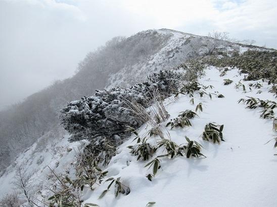 十種ヶ峰山頂