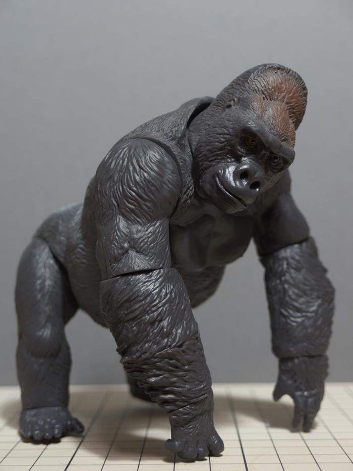 soft_gorilla_03.jpg