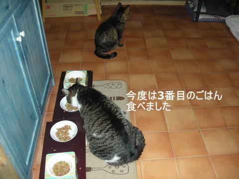 りん&ラスク0131