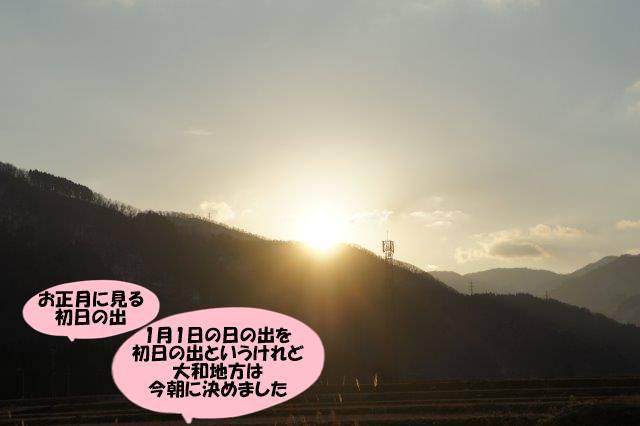 DSC04418.jpg