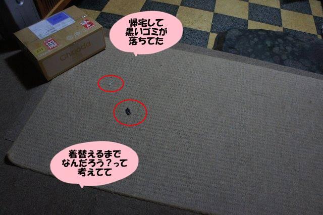 DSC04617.jpg