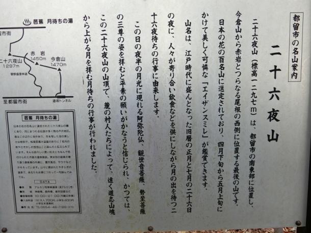 CIMG0025 (800x600)