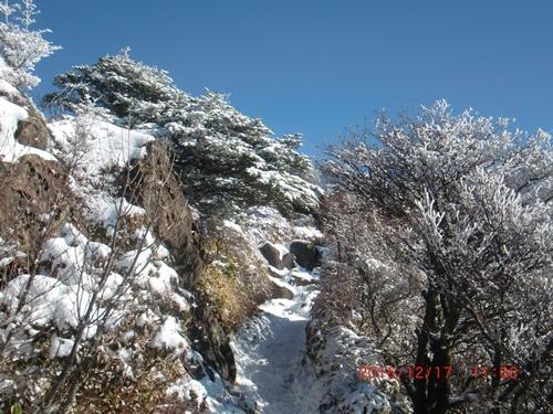 010 雪景色