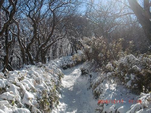 012 雪景色