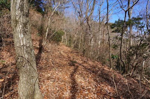 1ハイキング道