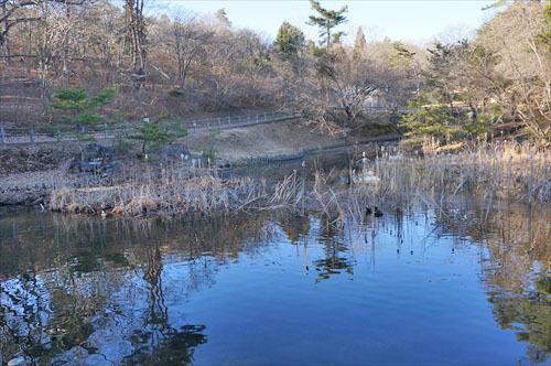 7小木津山自然公園
