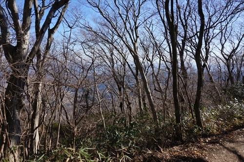 8ハイキング道