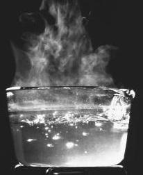 BoilingWater.jpg