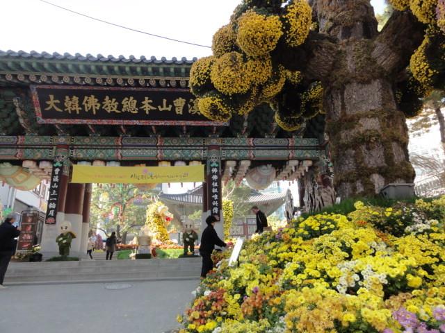 2016年11月9日 昼の曹渓寺