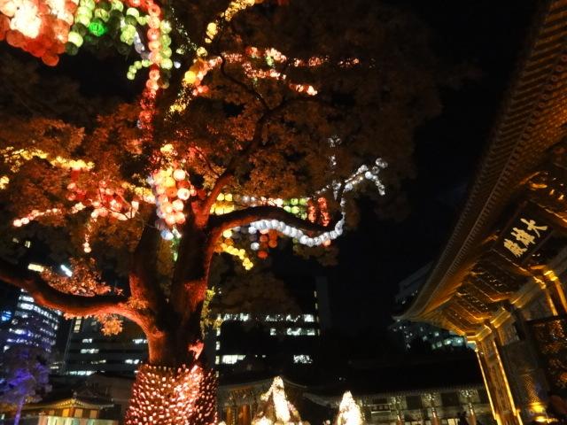 2016年11月9日 夜の曹渓寺