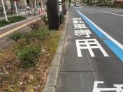 161117岡山自転車レーン
