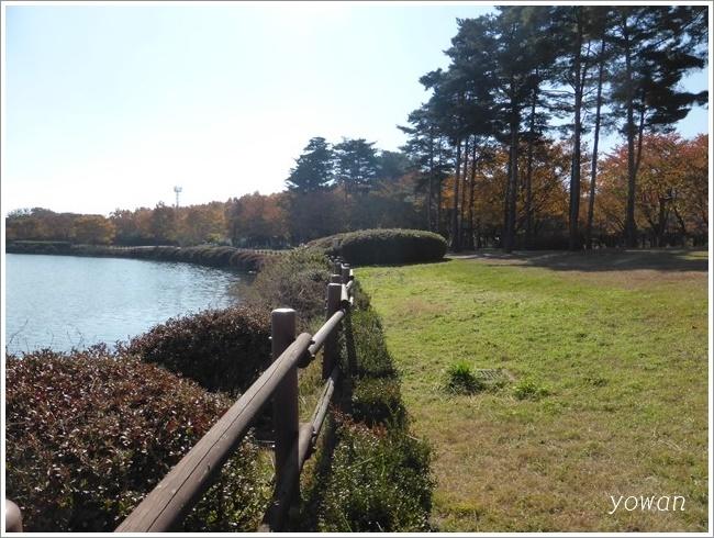 s-一山湖水公園ブランコ201611 (6)
