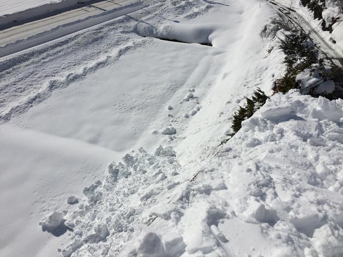 雪と戯れる 2017 冬 2
