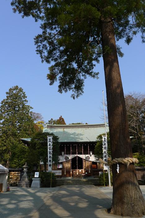 相模の国の神社  比々多神社  8