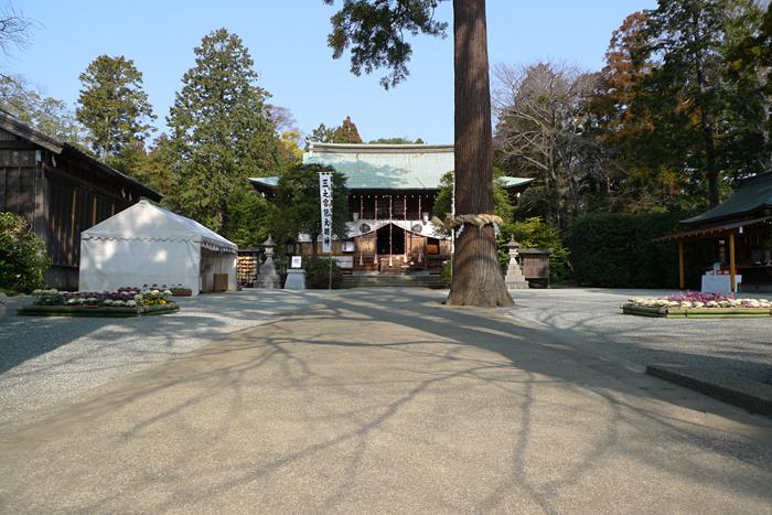 相模の国の神社  比々多神社  6