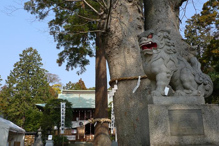 相模の国の神社  比々多神社  5