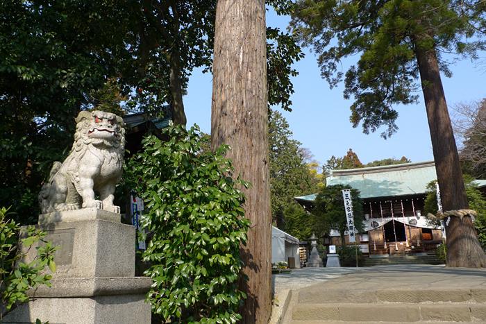 相模の国の神社  比々多神社  4