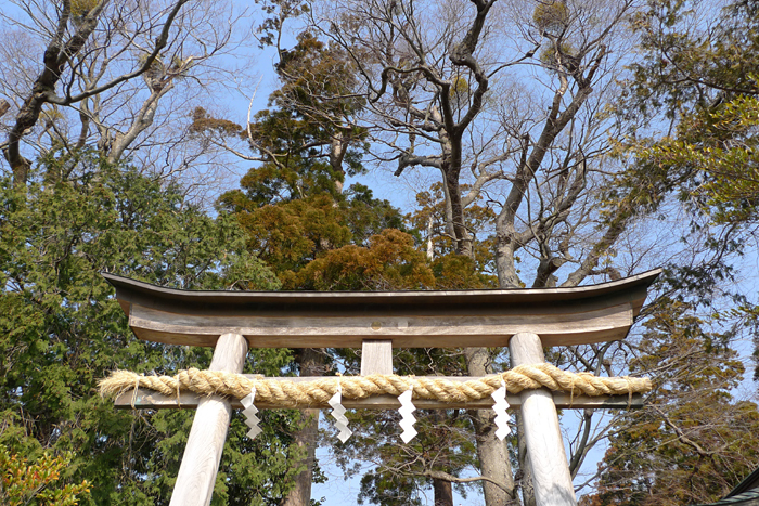 相模の国の神社  比々多神社  3