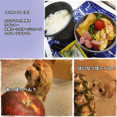 20161227221859c7c.jpg