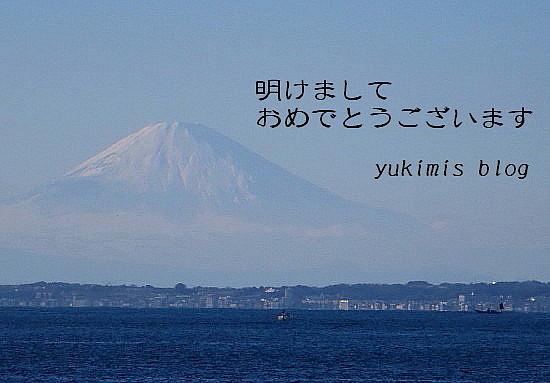 IMG_0969_4.jpg