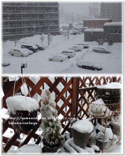 001-雪景色170113-6