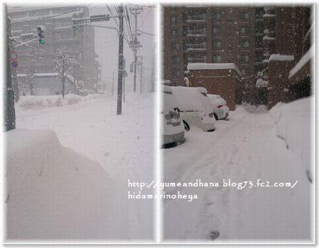 001-雪道17113-1