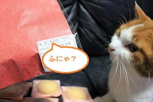 ブログNo.833(にゃんこの巾着袋)7