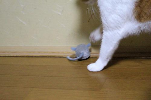 ブログNo.853(えっ!?そっち?)7