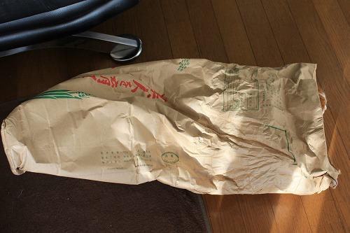 ブログNo.854(米袋と猫)1