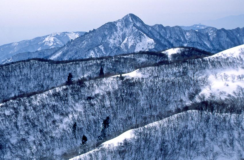 鈴鹿(冬)01
