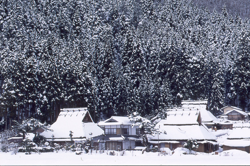 雪の美山01