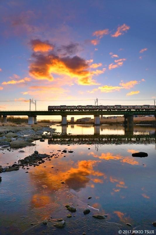0103 黄金色に輝く多摩川を渡る中央線 (東京都 立川市)
