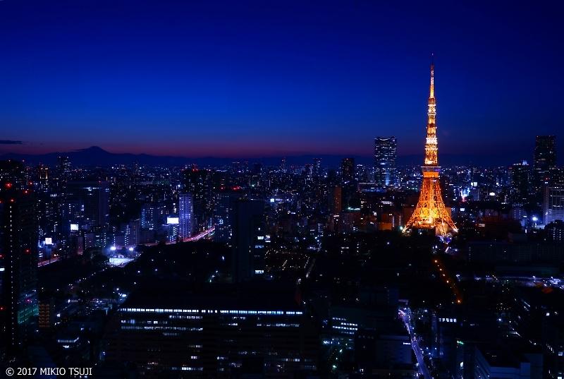 0117 ウィンターブルー  東京タワーの夜景 (東京都 港区)